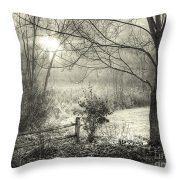 Throw Pillow featuring the photograph Morning Breaking by Betsy Zimmerli