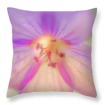 Morning Brilliance Throw Pillow