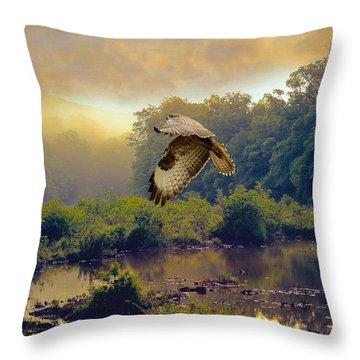 Morning Buzzard Throw Pillow by Roy  McPeak