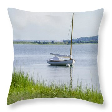 Morning Calm Throw Pillow by Keith Armstrong