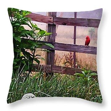 Morning Cardinal Throw Pillow