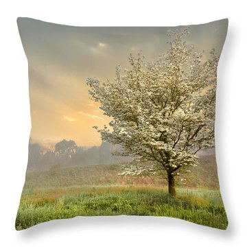 Morning Celebration Throw Pillow