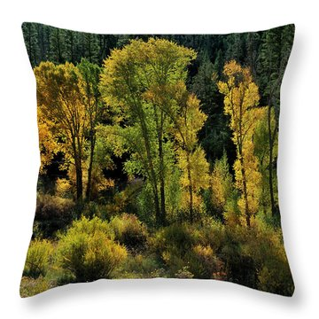 Morning Cottonwoods Throw Pillow