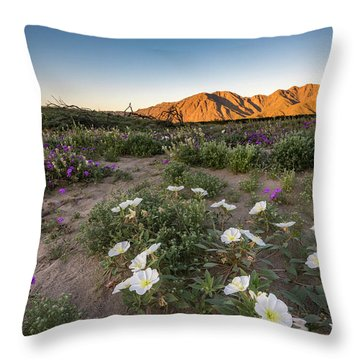 Morning Desert Evening Primrose Throw Pillow