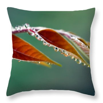 Throw Pillow featuring the photograph Morning Dew by Joerg Lingnau