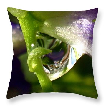 Morning Dew Throw Pillow by Rona Black