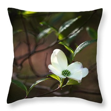 Morning Dogwood At Buffalo River Trail Throw Pillow