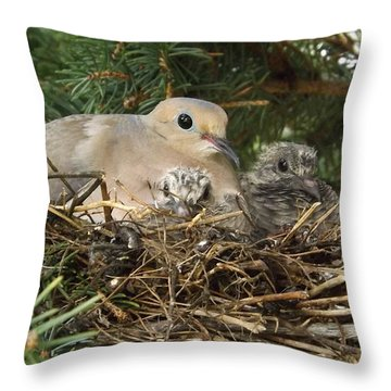 Morning Dove And Two Babys #2 Throw Pillow