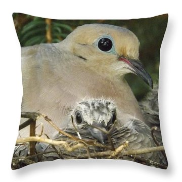 Morning Dove And Two Babys Throw Pillow