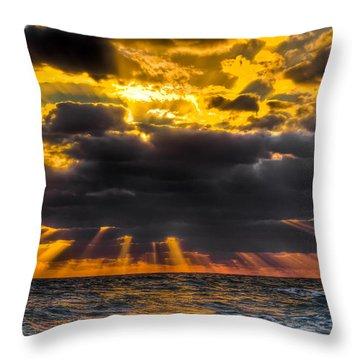 Morning Drama Throw Pillow