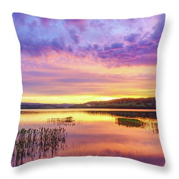 Throw Pillow featuring the photograph Morning Fire by Dmytro Korol