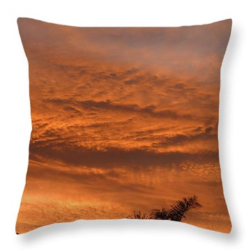 Throw Pillow featuring the photograph Morning Flame by Mark Blauhoefer