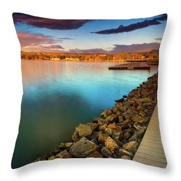Morning Fleeting Light Throw Pillow