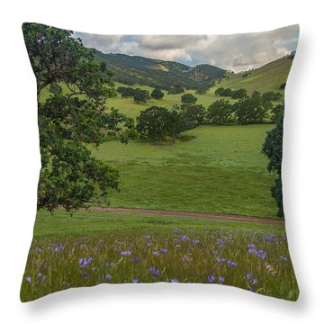 Morning Flowers At Round Valley Throw Pillow by Marc Crumpler