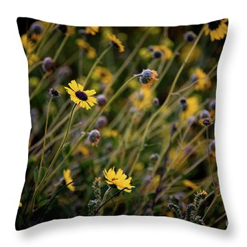 Throw Pillow featuring the photograph Morning Flowers by Kelly Wade