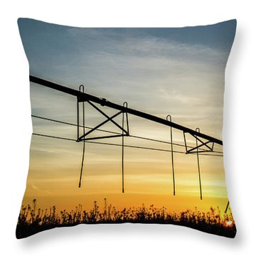 Throw Pillow featuring the photograph Morning Flowers by Tyson Kinnison