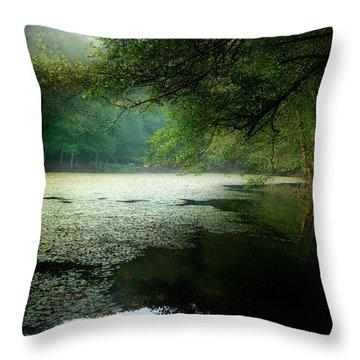 Morning Fog Throw Pillow