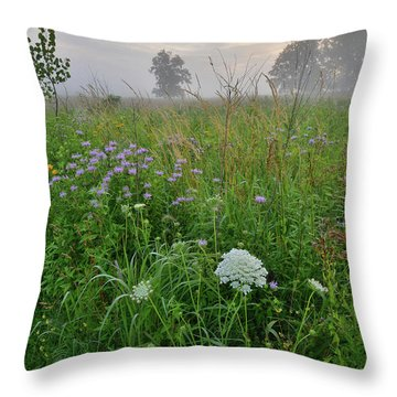 Morning Fog Over Glacial Park Prairie Throw Pillow