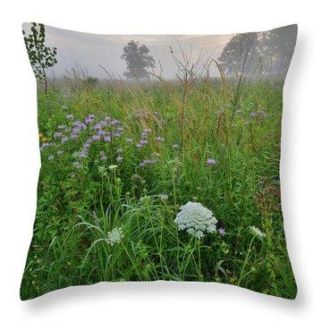 Morning Fog Over Glacial Park Prairie Throw Pillow