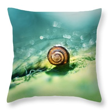 Morning Glare Throw Pillow