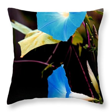 Morning Glories 1 Throw Pillow