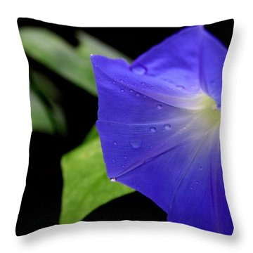 Morning Glories 2 Throw Pillow
