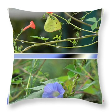 Throw Pillow featuring the photograph Morning Glories And Butterfly by EricaMaxine  Price
