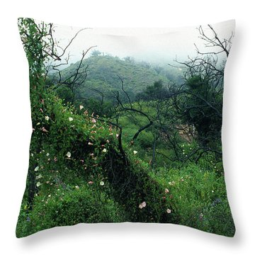 Morning Glories In Fog Throw Pillow by Kathy Yates