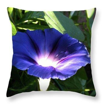 Morning Glorious Throw Pillow