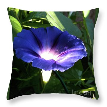Morning Glorious Throw Pillow