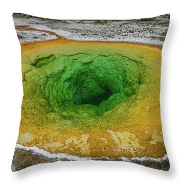 Morning Glory Throw Pillow by Alpha Wanderlust