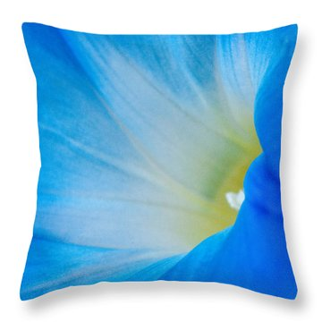 Morning Glory Throw Pillow by Carolyn Dalessandro