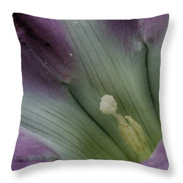 Throw Pillow featuring the photograph Morning Glory Center by William Selander