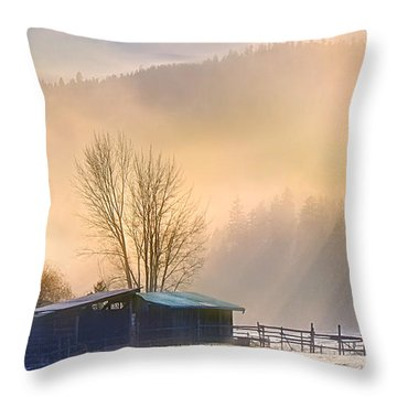 Morning Glory Throw Pillow by John Poon