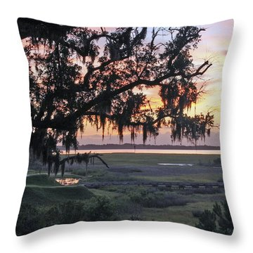 Morning Glory Throw Pillow by Phill Doherty