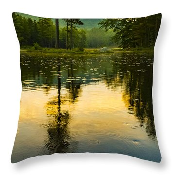 Morning Glow On Lake Throw Pillow