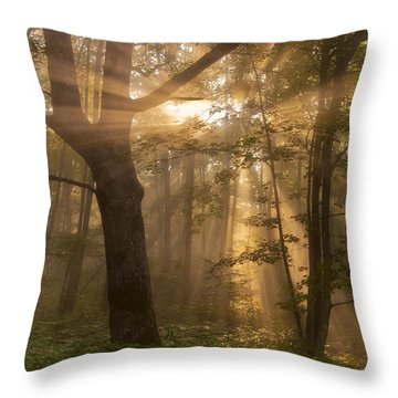 Morning God Rays Throw Pillow