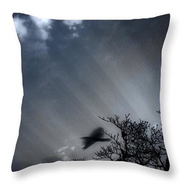 Throw Pillow featuring the photograph Morning  by Gray  Artus