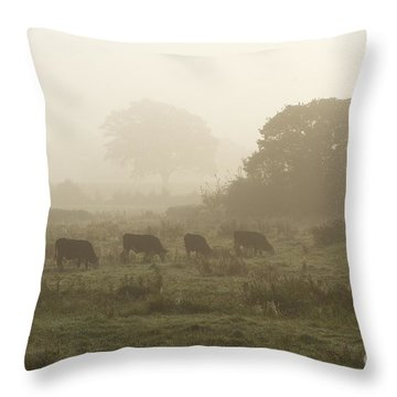Throw Pillow featuring the photograph Morning Graze by Gary Bridger