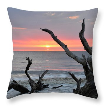 Morning Greeting Throw Pillow by Bruce Gourley