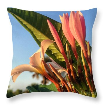 Throw Pillow featuring the photograph Morning Heaven by LeeAnn Kendall