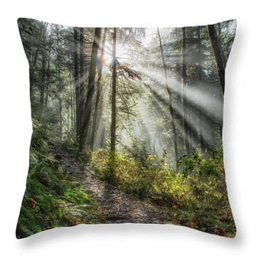 Morning Hike Throw Pillow