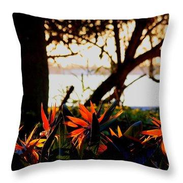 Morning In Florida Throw Pillow