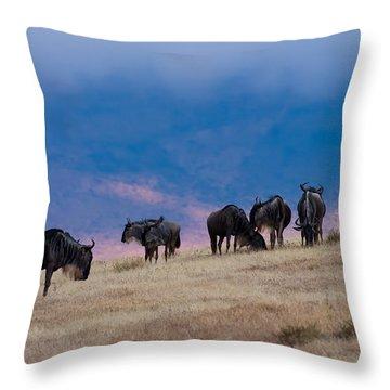 Morning In Ngorongoro Crater Throw Pillow by Adam Romanowicz