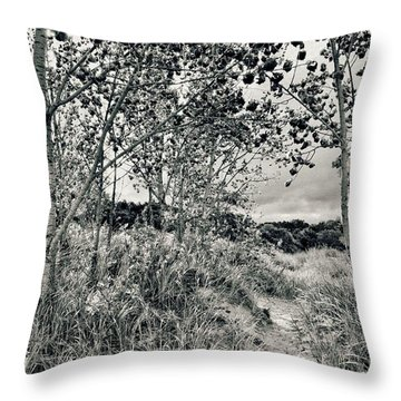 Throw Pillow featuring the photograph Morning In The Dunes by Michelle Calkins