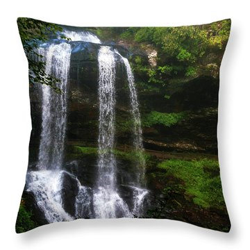 Morning In The Mist Throw Pillow by Allen Carroll