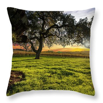 Morning In Wine Country Throw Pillow