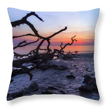 Morning Light Throw Pillow by Alan Raasch