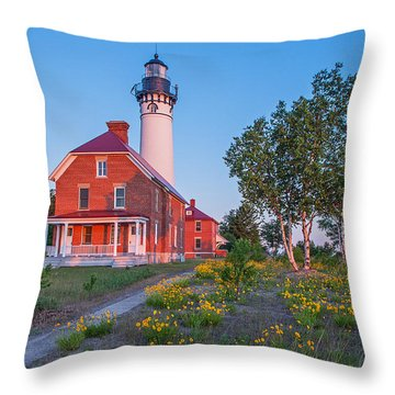 Morning Light At Au Sable Point Throw Pillow