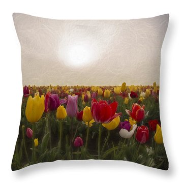 Morning Light Throw Pillow by Billie-Jo Miller